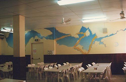 peinture murale 6 salle 2