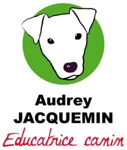 logo_audrey_jacquemin_educatrice_canin_vosges_emmanuel_didier_kazy-253x300 Arthur